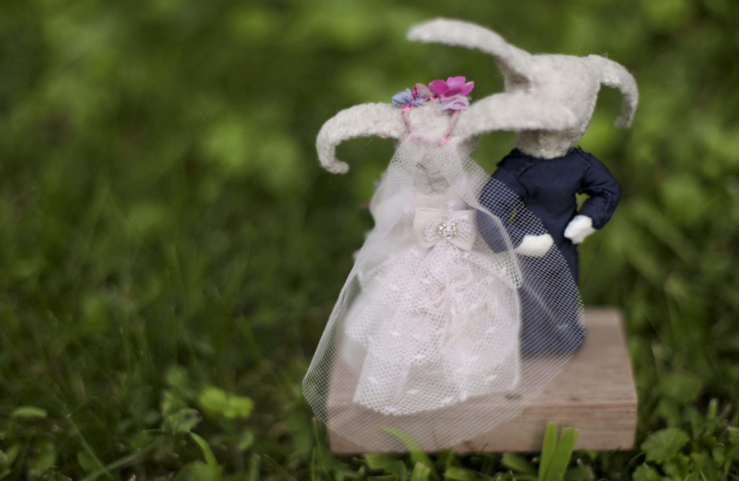 2014-ariel wedding-bunnies_4_1.jpg