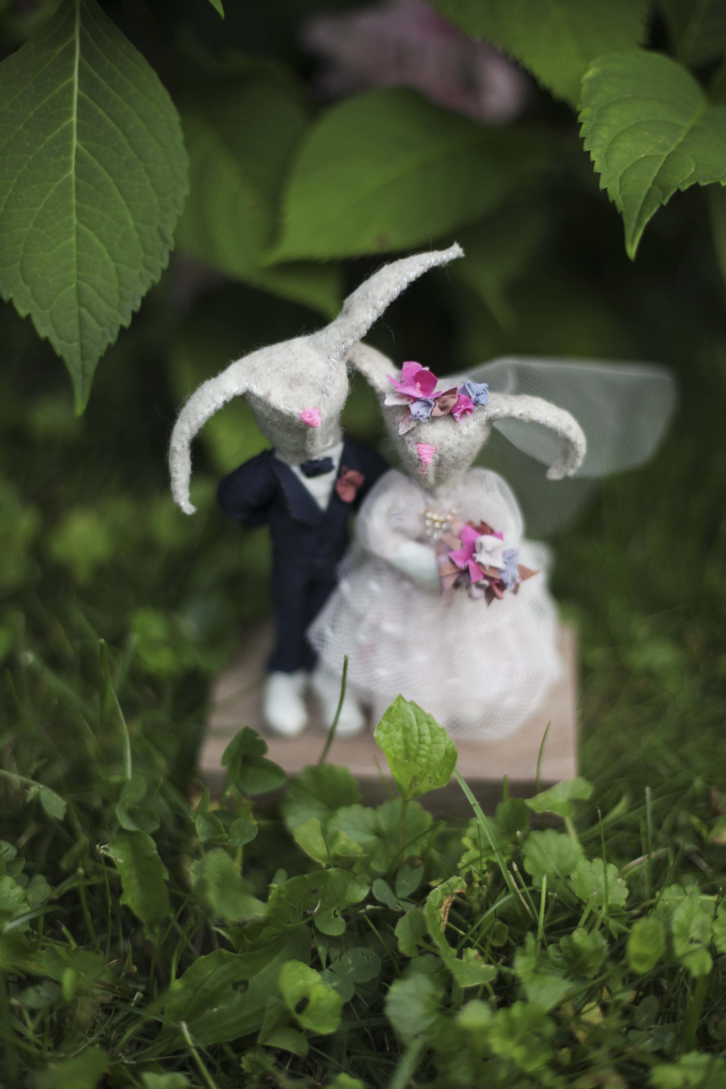 2014-ariel wedding-bunnies_2.jpg