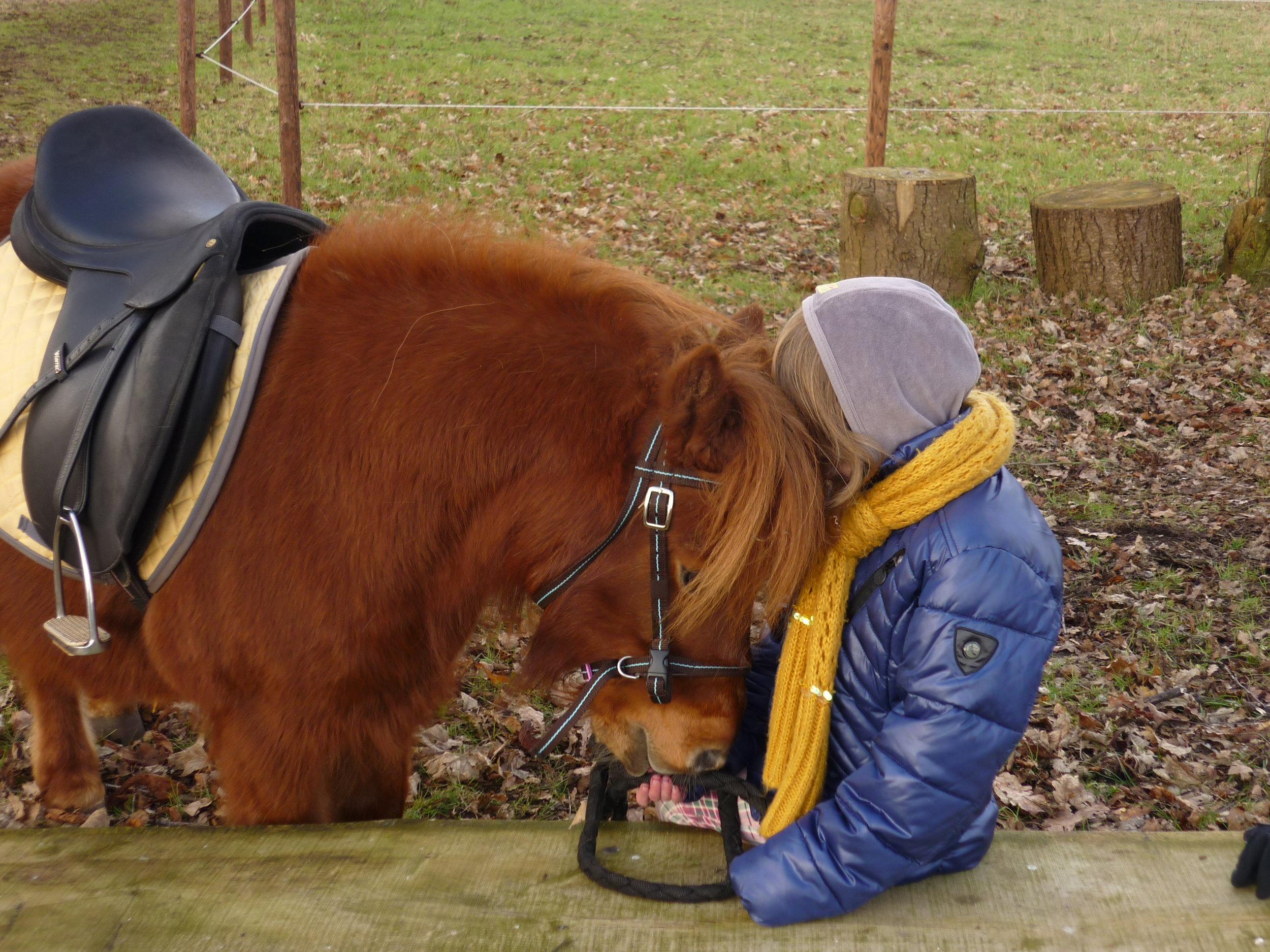 Therapeutisch paardrijden 1.JPG