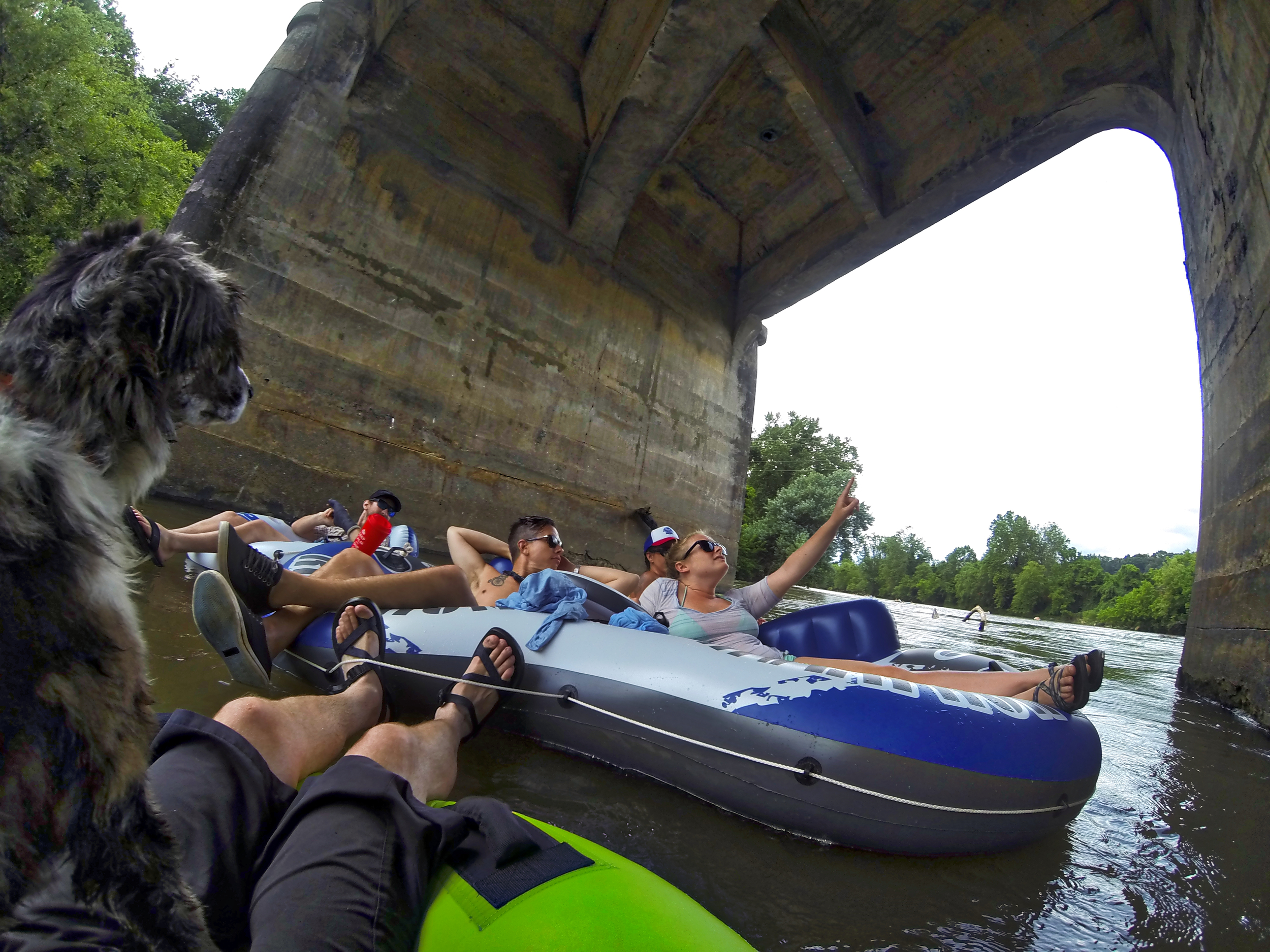 Tube party on the French Broad River