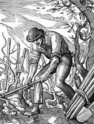 farmer_walt.jpg