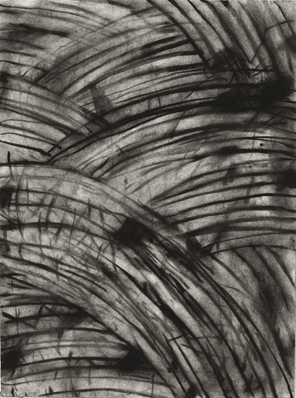 """Untitled 14.05    2014  Charcoal on Paper,12"""" x 9"""""""