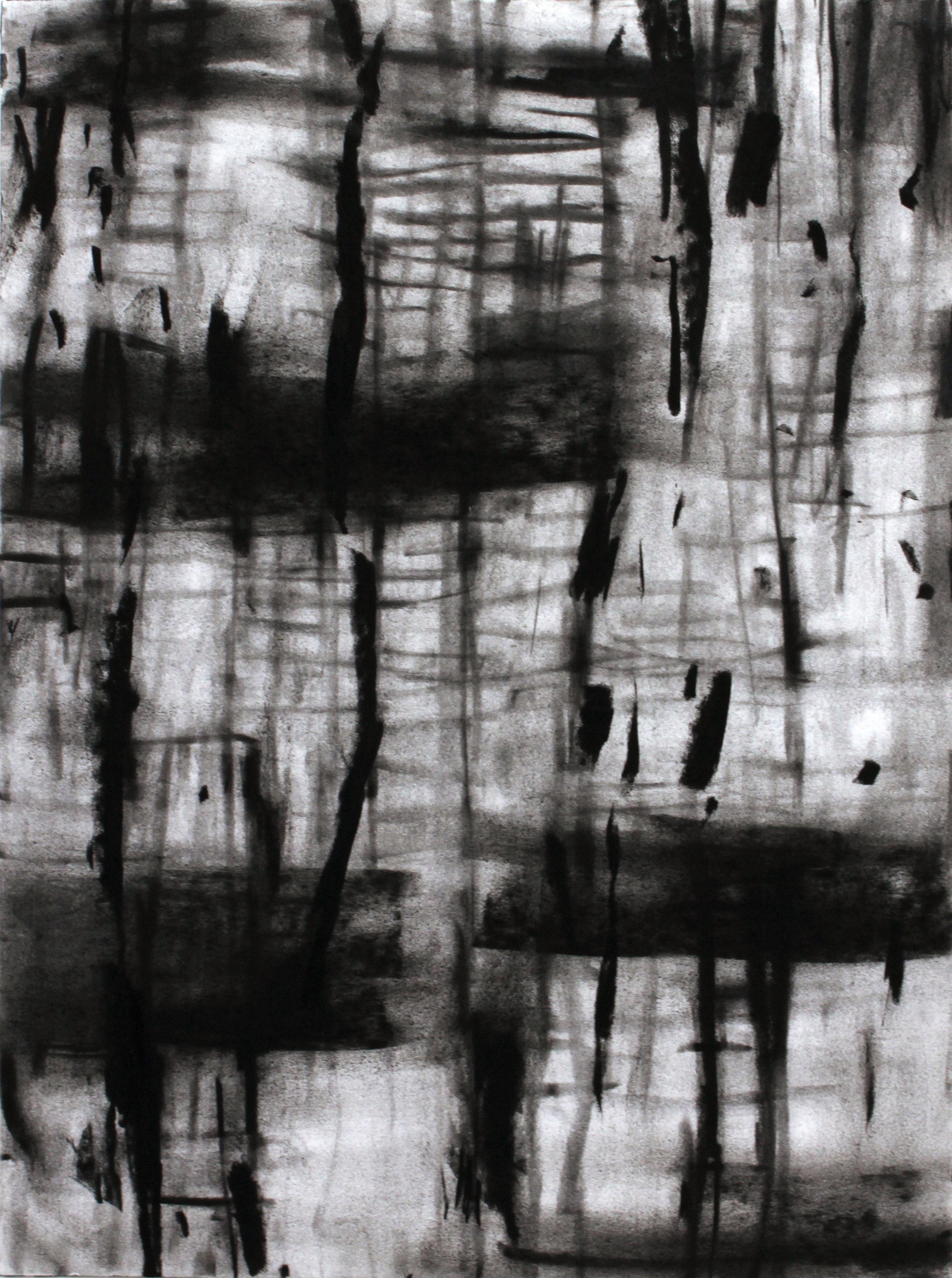 """Untitled 15.02   2016  Charcoal on Paper,12"""" x 9"""""""