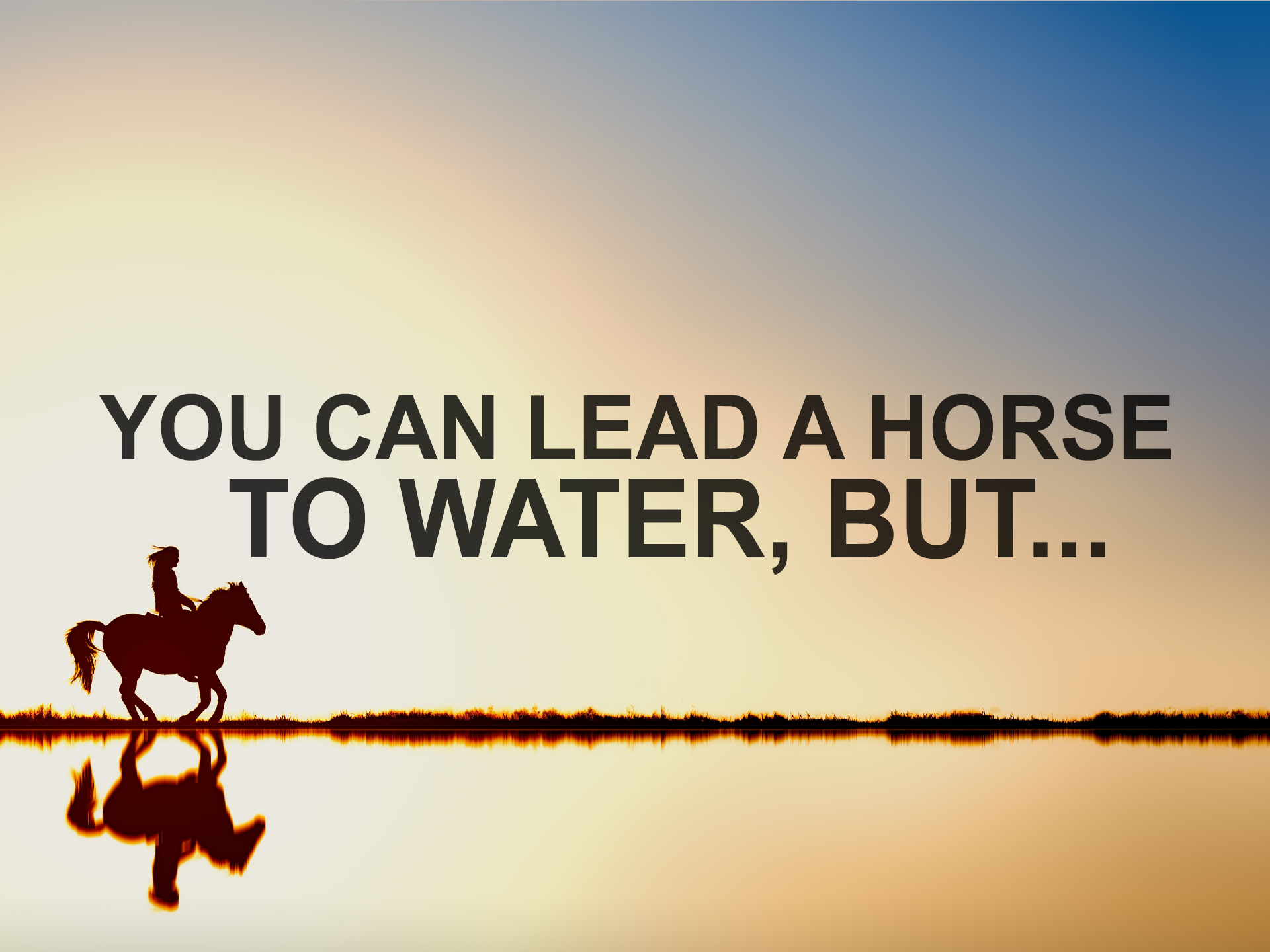 030319 You can lead a horse to water but.png