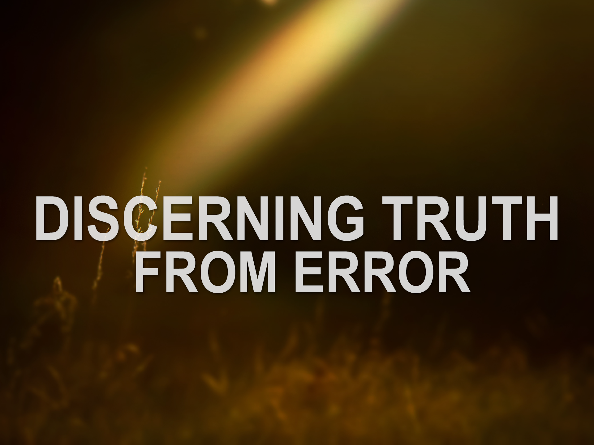 092219 discerning truth from error part 2.png