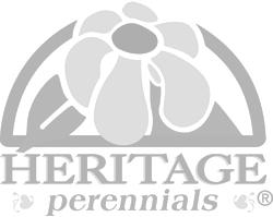 Heritage Perennials
