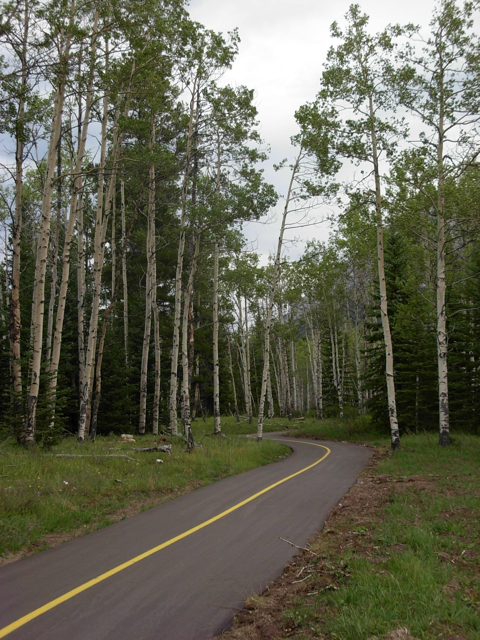O2-Evan-Thomas-Bike-Path2.JPG
