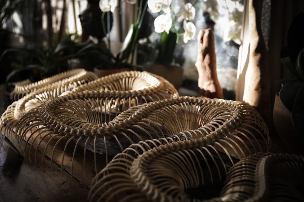 Python Skeleton Articulation by Alessandra Dzuba