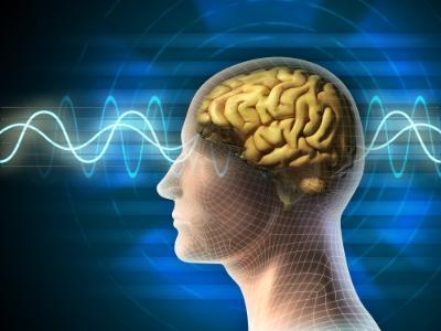 Brain-EEG.jpg