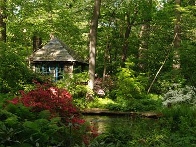 Arboretum at the Barnes Foundation