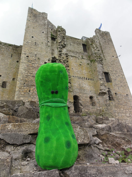 Where in the world is Pickleman.001.jpg