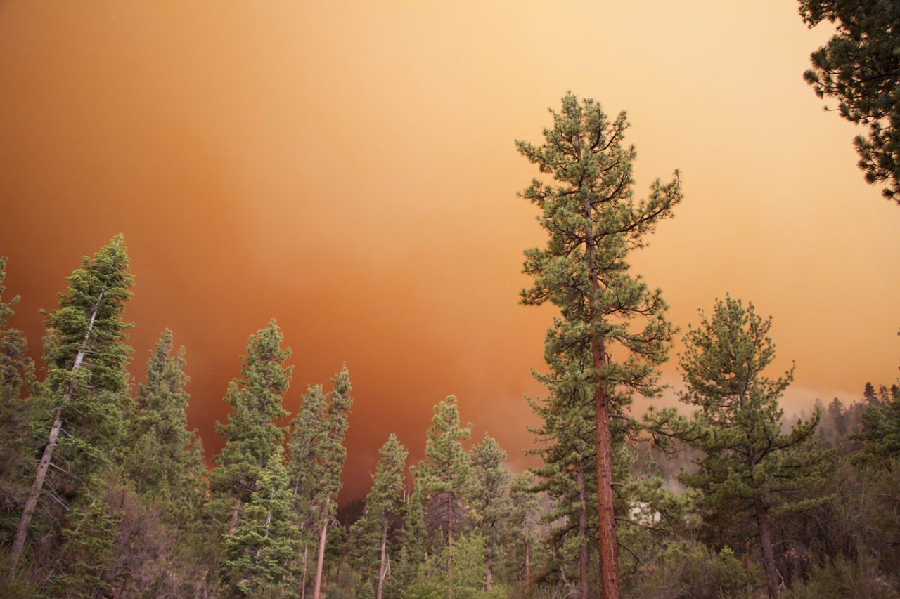"""Lake Fire: Orange Gradient"""
