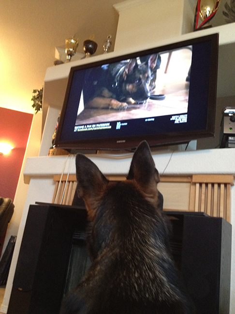 Hexe watching herself in  Common Law .