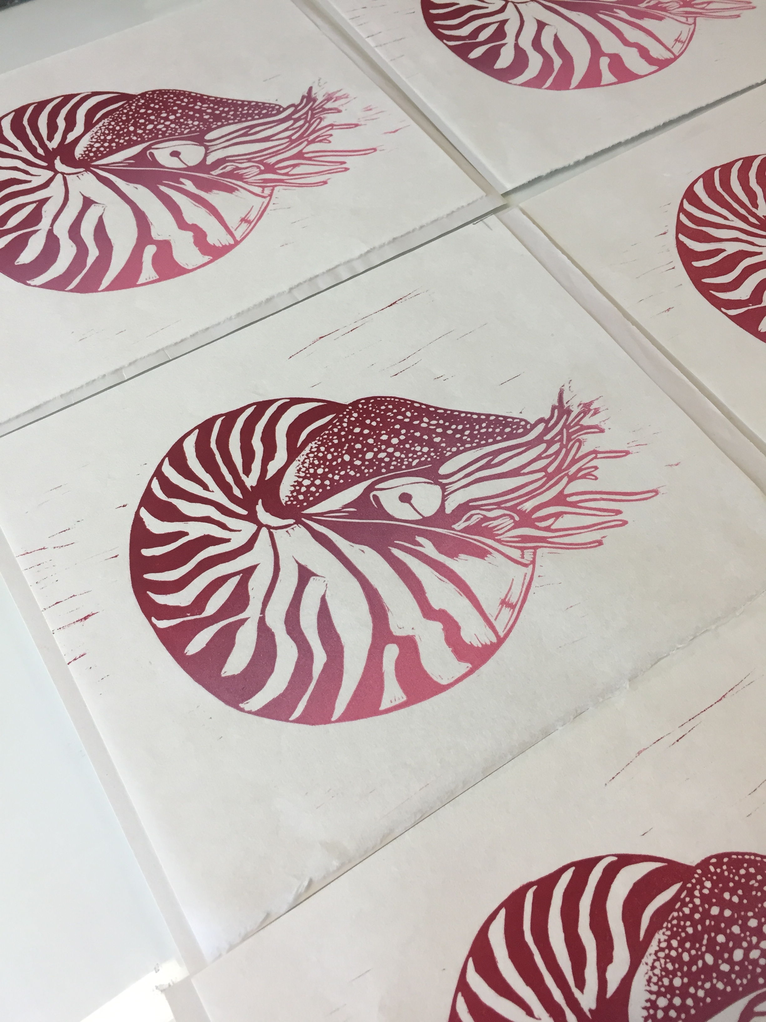 NAUTILUS. An impomptu studio session produces a new edition of handmade prints.