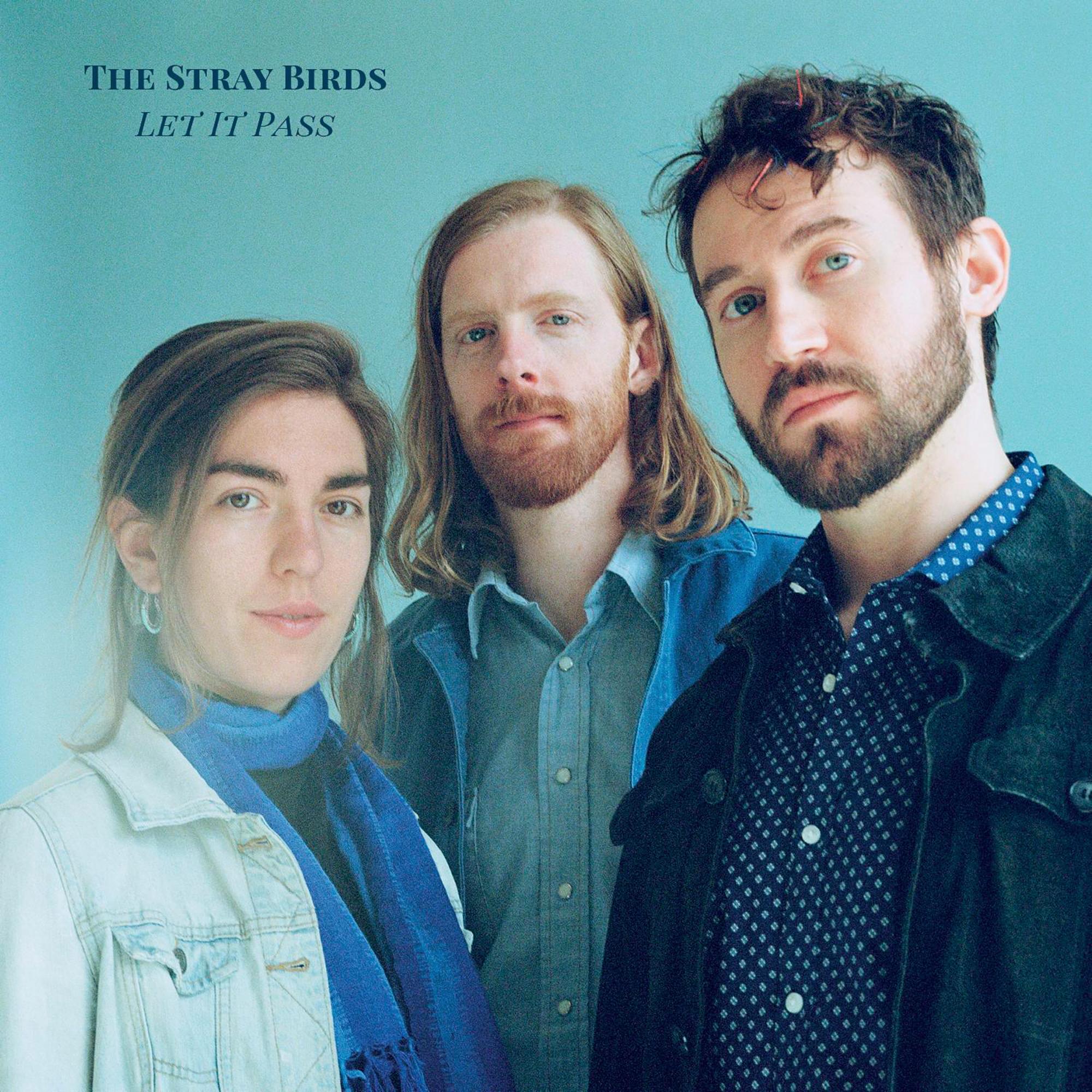 StrayBirds_website.jpg