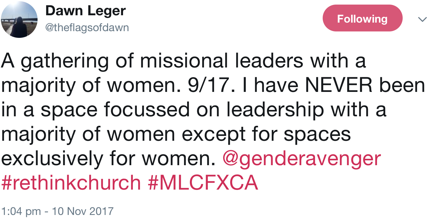 GenderAvenger Dawn Leger