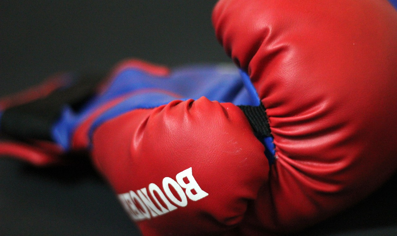 boxing-gloves-390432_1280.jpg