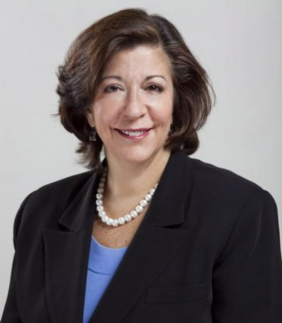 Sara Feigenholtz,  via Wikipedia