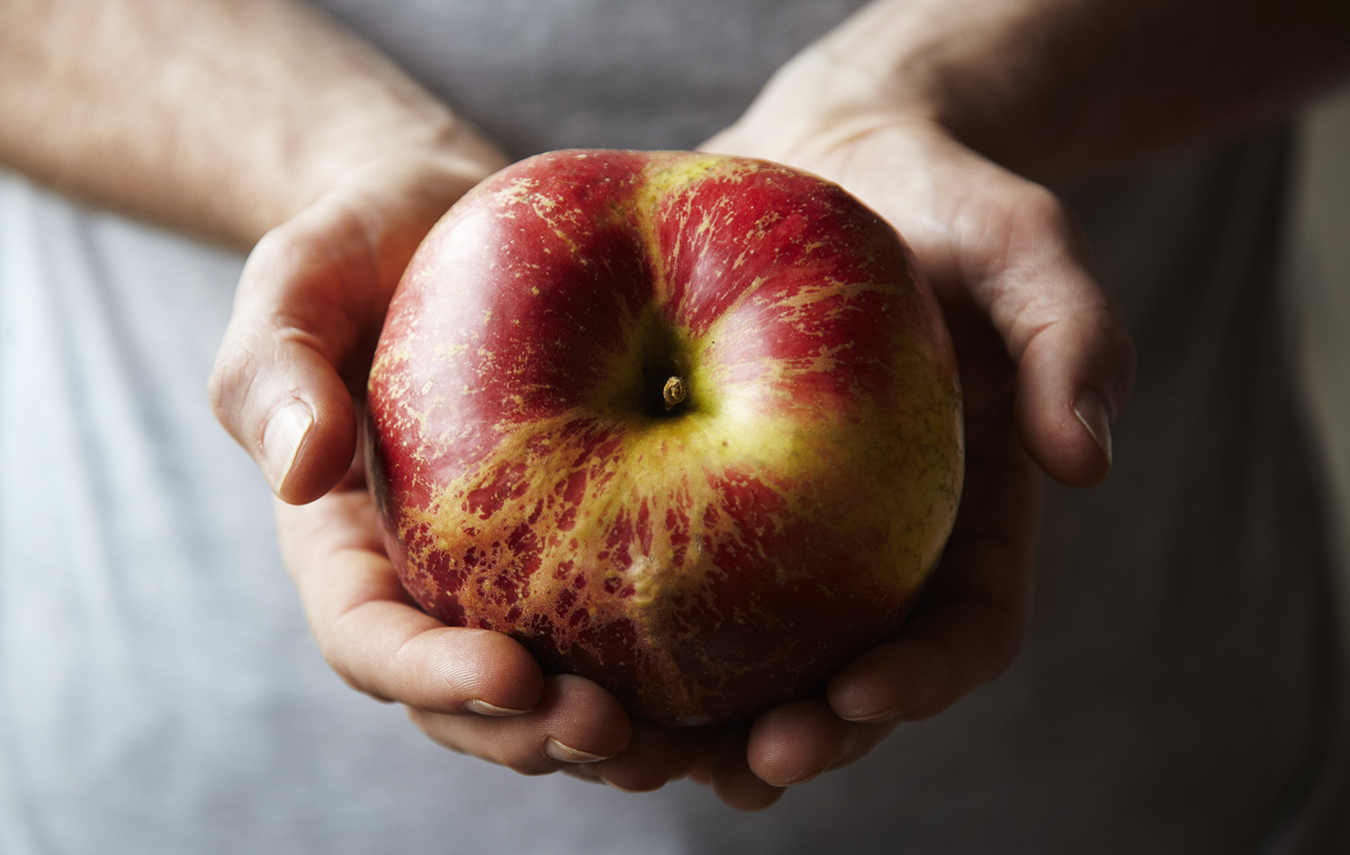How big is this apple ? So big, too big, not too big..How big can an apple get.