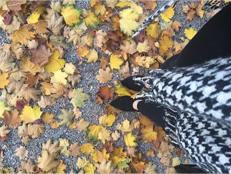 Leaves, leaves, and more leaves. I can never get enough. Same outfit as  here , just with different jeans.