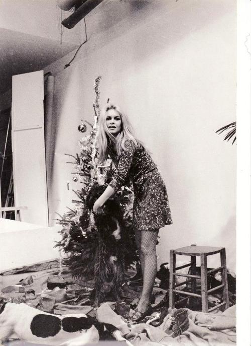 Bridgitte Bardot via  here