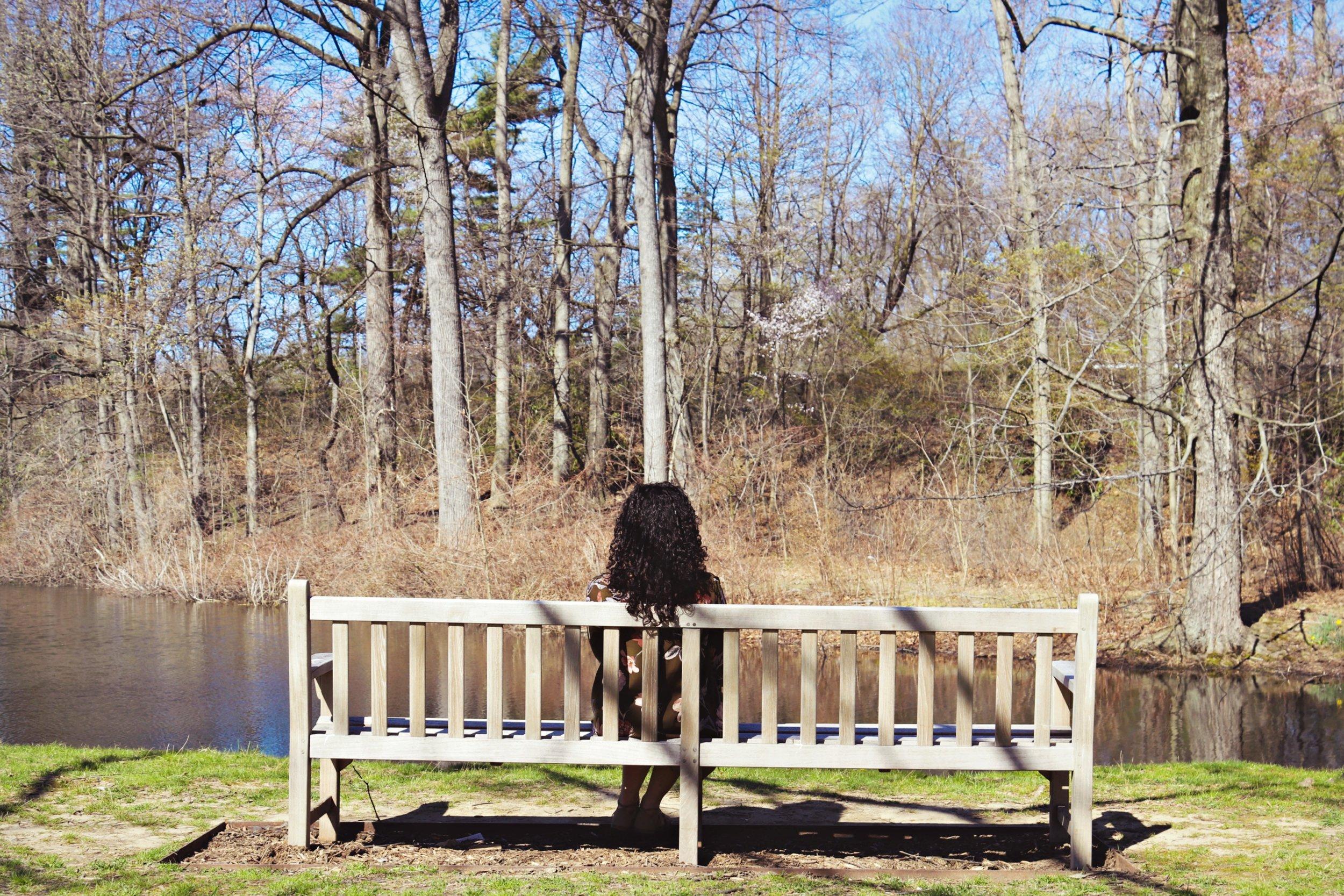 Photo: millistephania.com