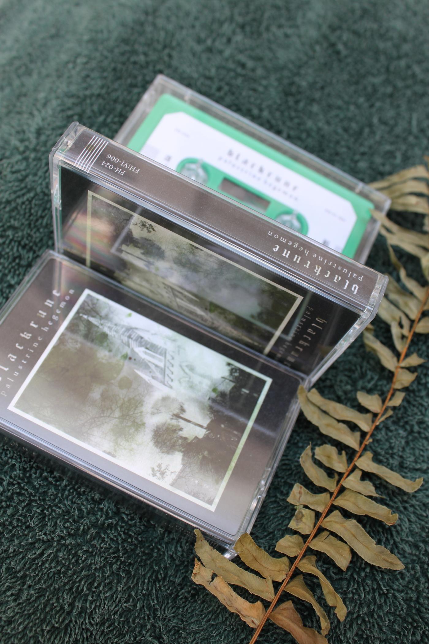 TapeStandard copy.JPG