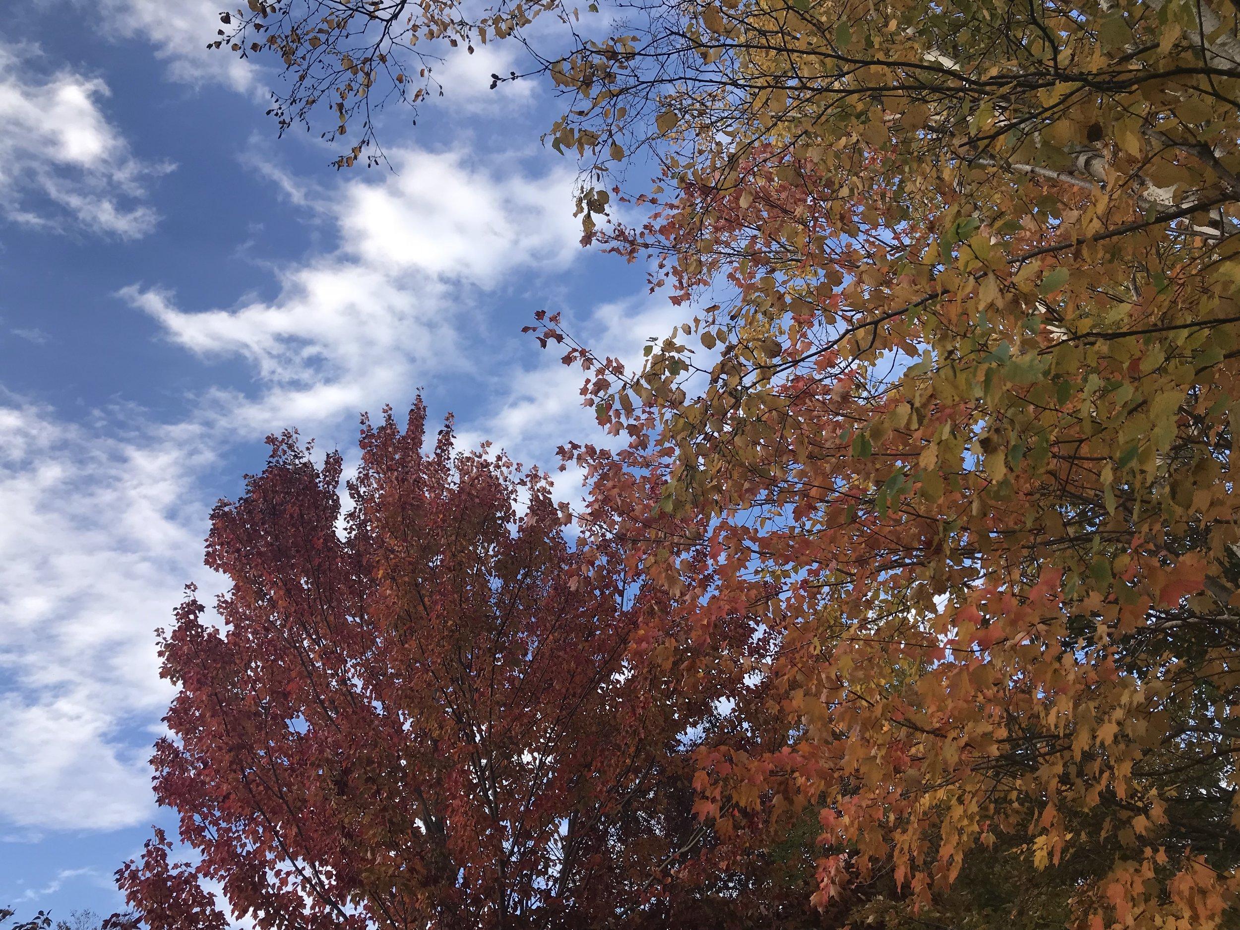 October.byamygrace