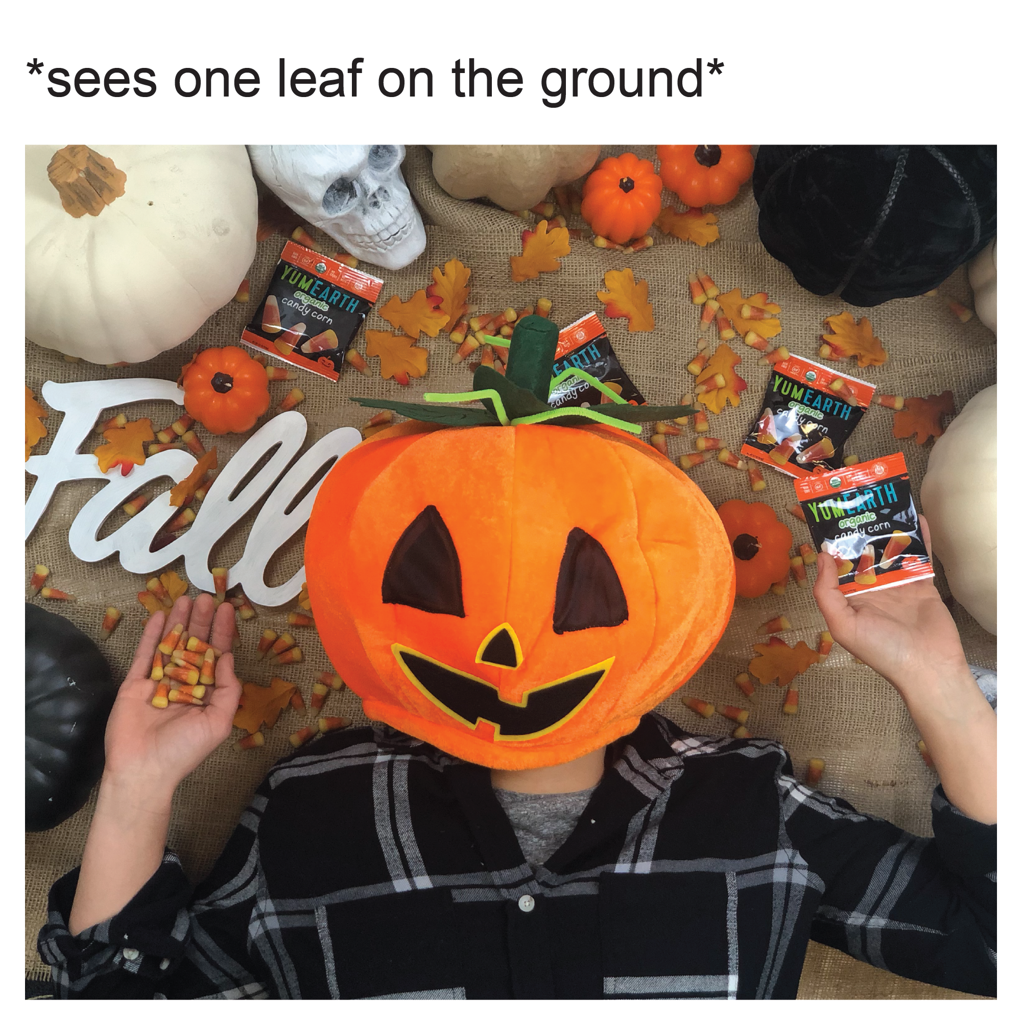 HalloweenMemes_201-20.png