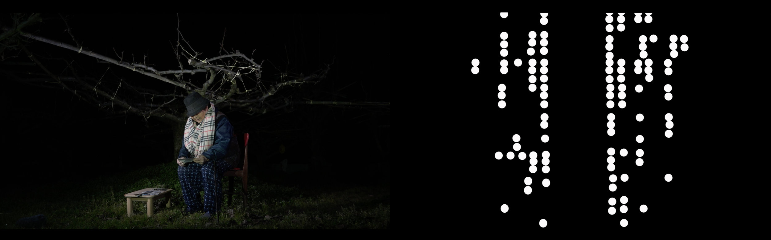 <平成三十一年二月秋芳梨樹> 雙頻道影片  <Syuho Pear Tree in Heisei 31th, February.> 2-Channel Videos.