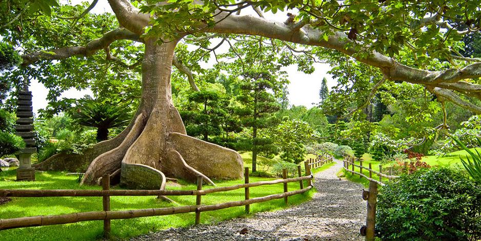national-botanical-gardens-santo-domingo.jpg