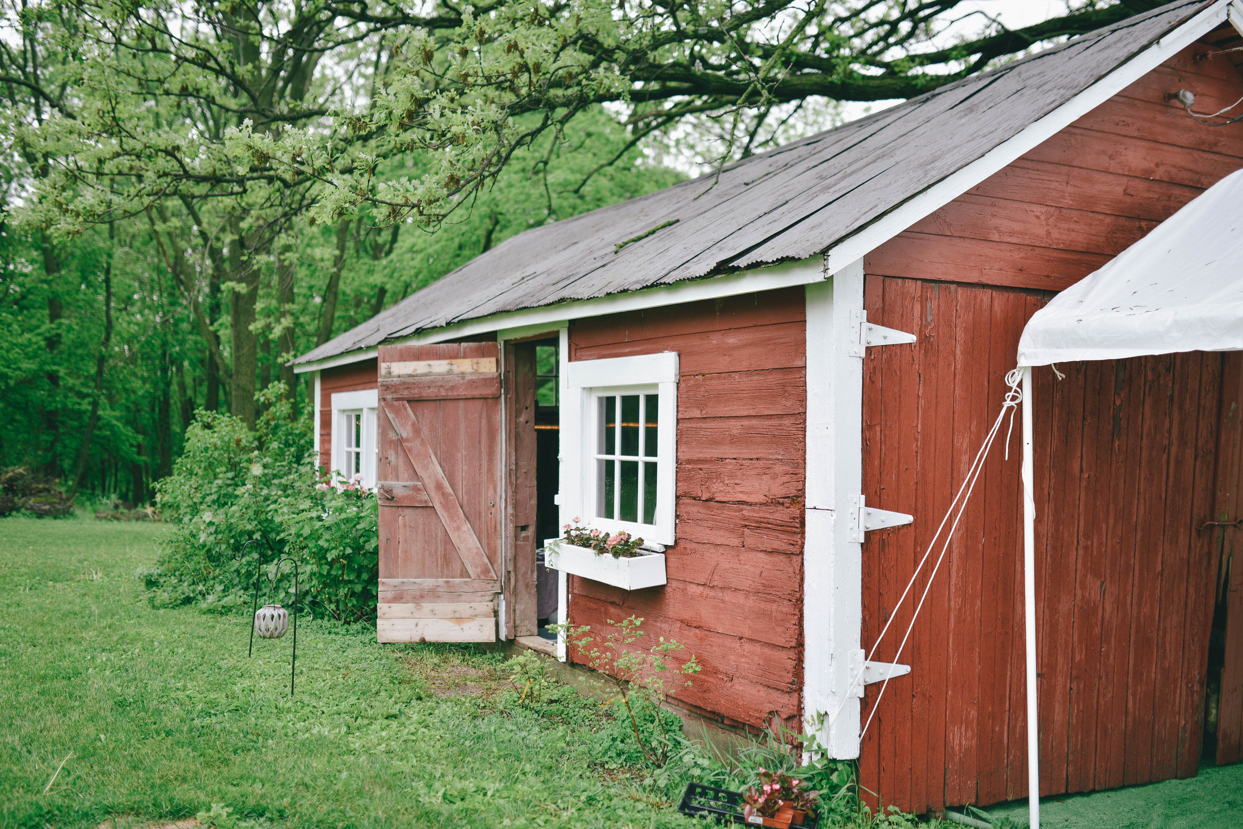 This is a little barn that used to house firewood. My Aunt worked so hard on the inside so that it could be used for a drink shed/ little get away from the main event! Keep scrolling to see the inside.