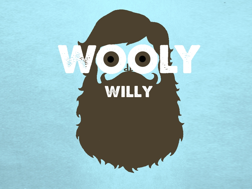 Wooly Willy.jpg