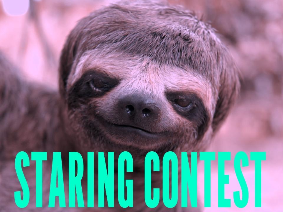Staring Contest.jpg
