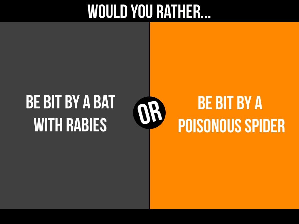 bat or spider.jpg