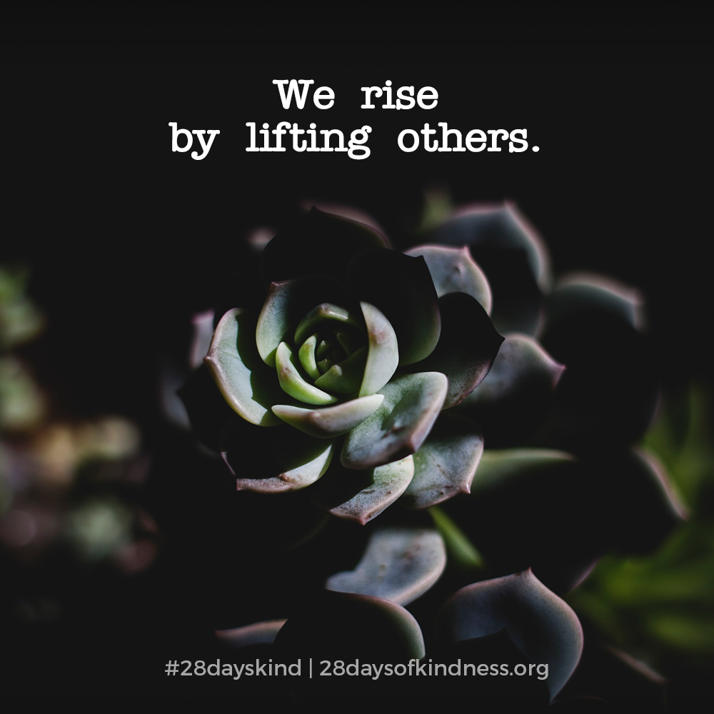 28dayskind_quote6.png