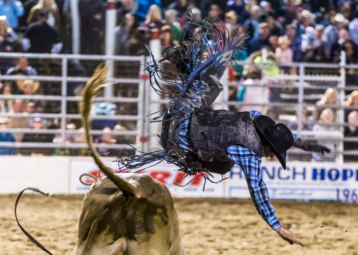 Dustin-DeYoe-Photography-Bull-Riding-3.jpg