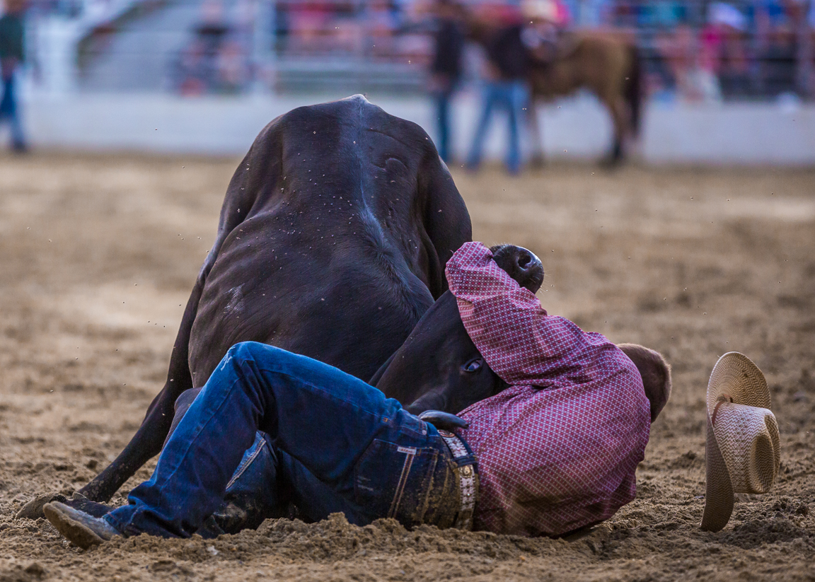 Dustin-DeYoe-Photography-Steer-Wrestling-11.jpg