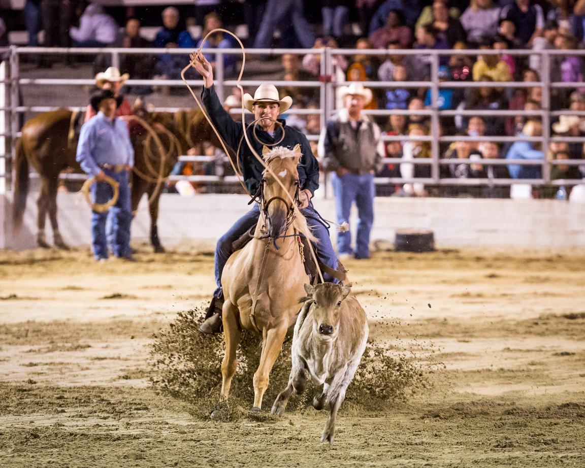 Dustin-DeYoe-Photography-Tie-Down-Roping-3.jpg