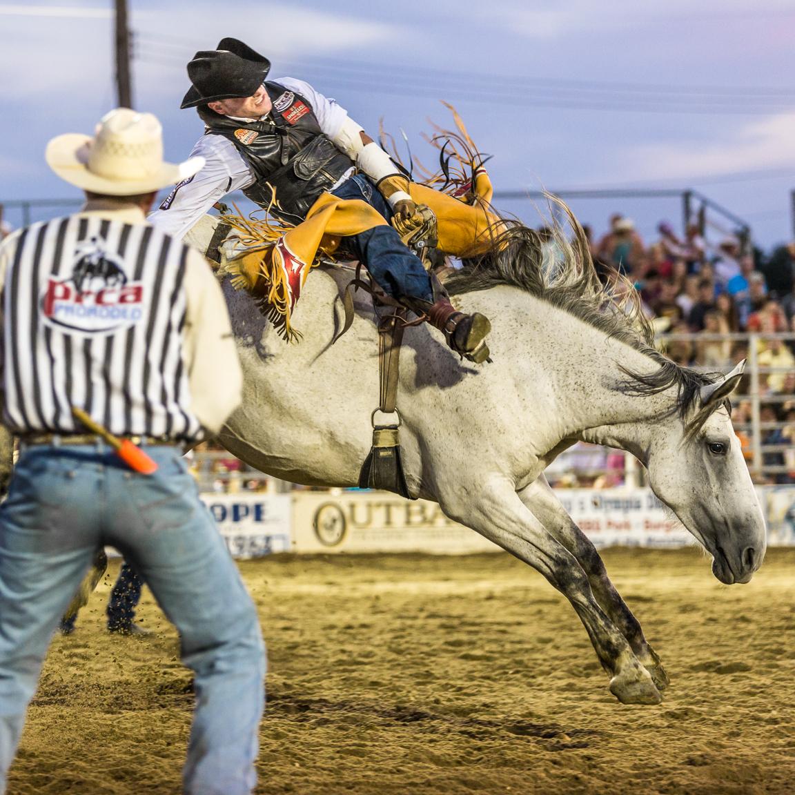 Dustin-DeYoe-Photography-Bronc-Riding-5.jpg
