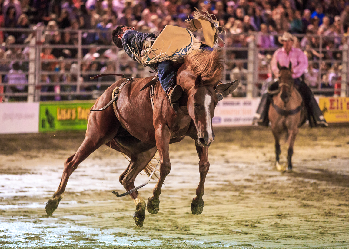 Dustin-DeYoe-Photography-Bronc-Riding-16.jpg
