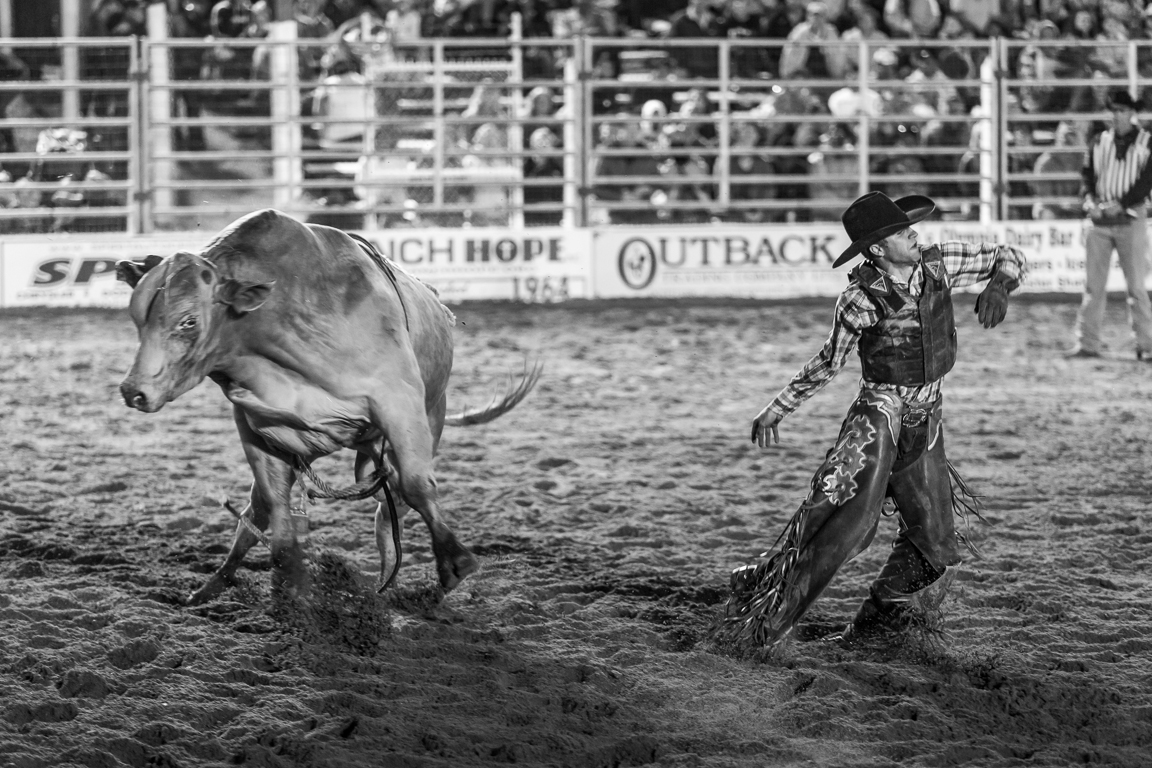 Dustin-DeYoe-Photography-Bull-Riding-24.jpg
