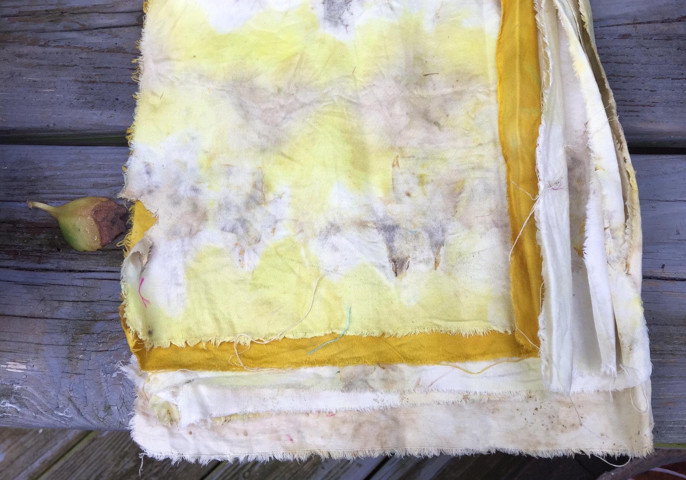 eco dye progress 4