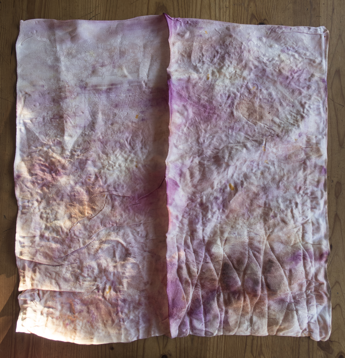 the eco-dyed cloth