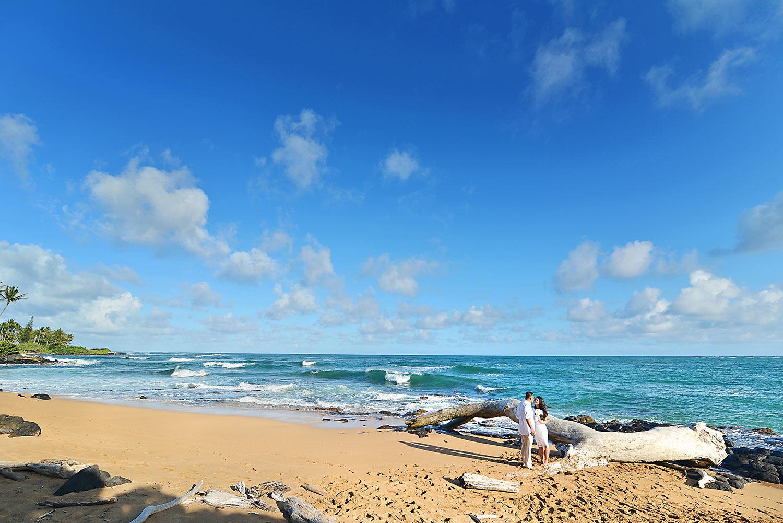 Kauai-Island-Hawaii-wedding-photo-(44).jpg