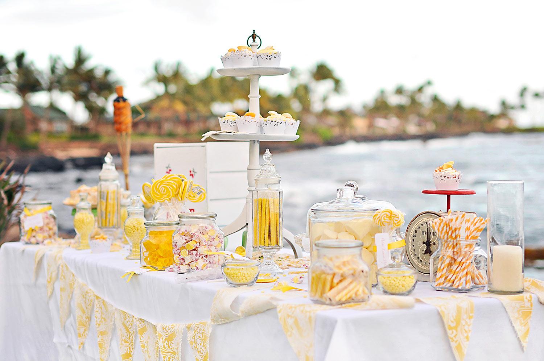Kauai-Island-Hawaii-wedding-photo-(54).jpg
