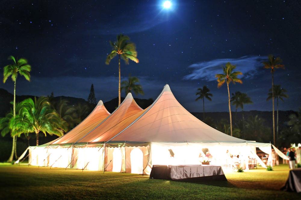 Kauai-wedding-photo-110.jpg