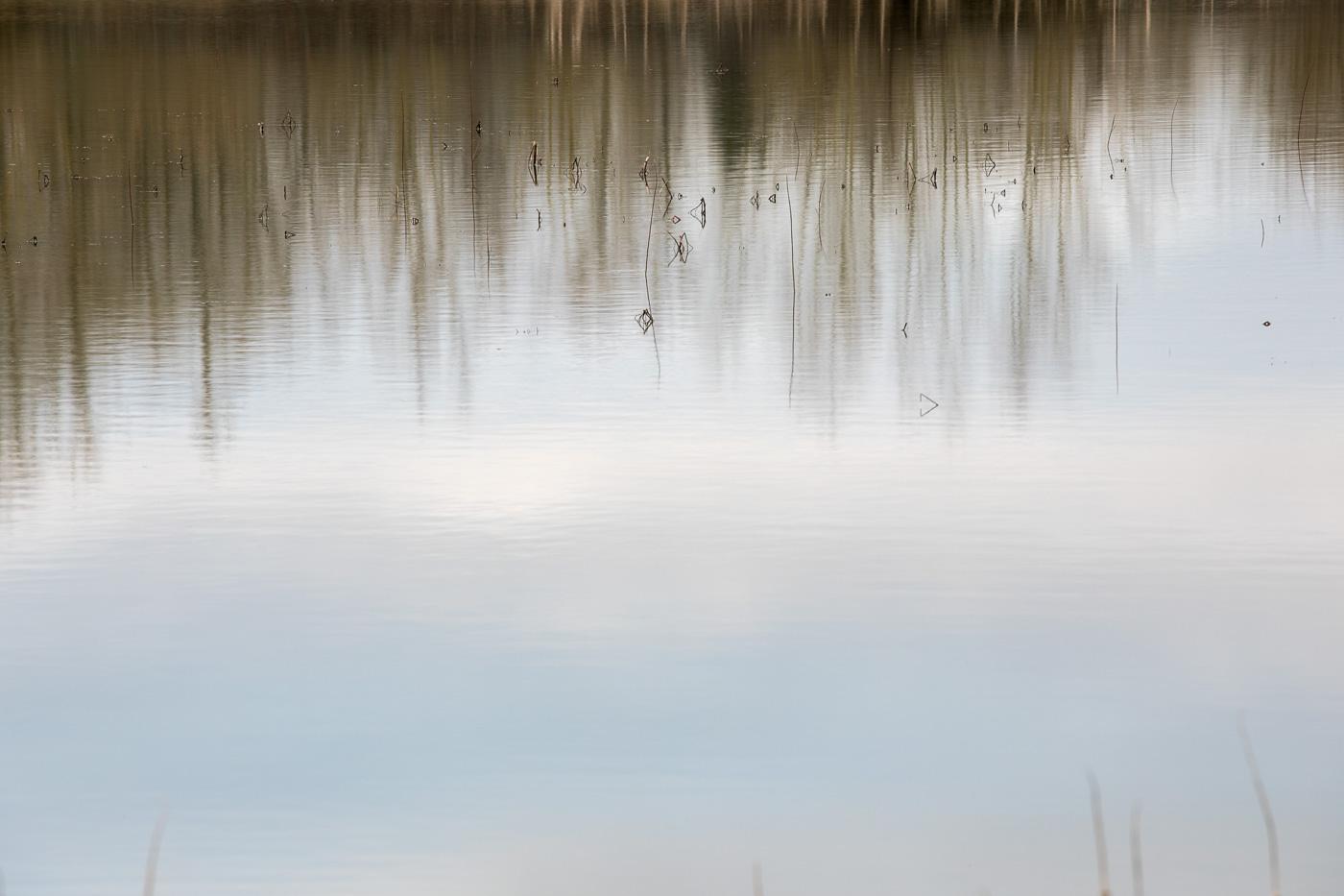 luc vanhalewyck - landschap zonder horizon