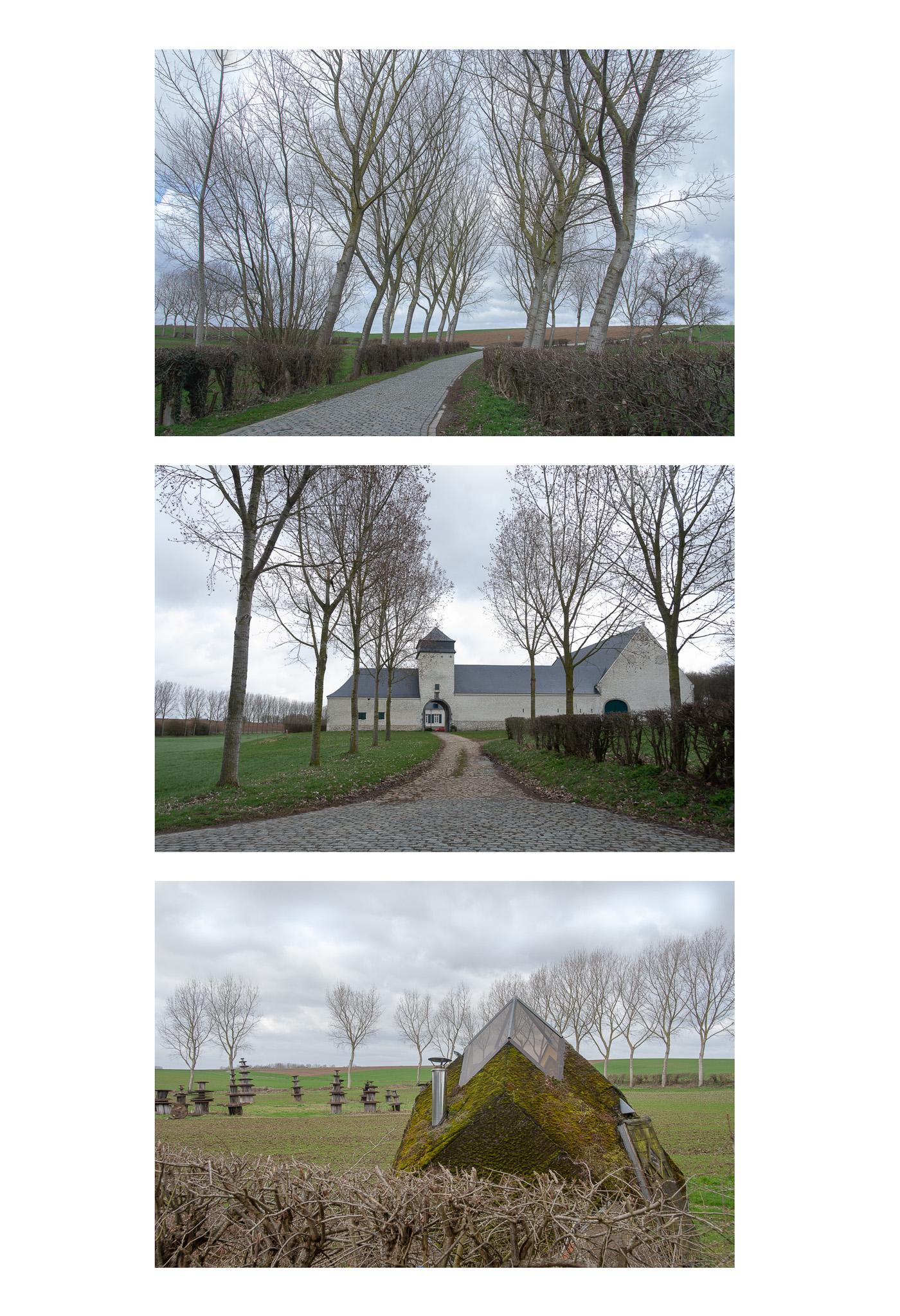 Veronique Windey - contrast