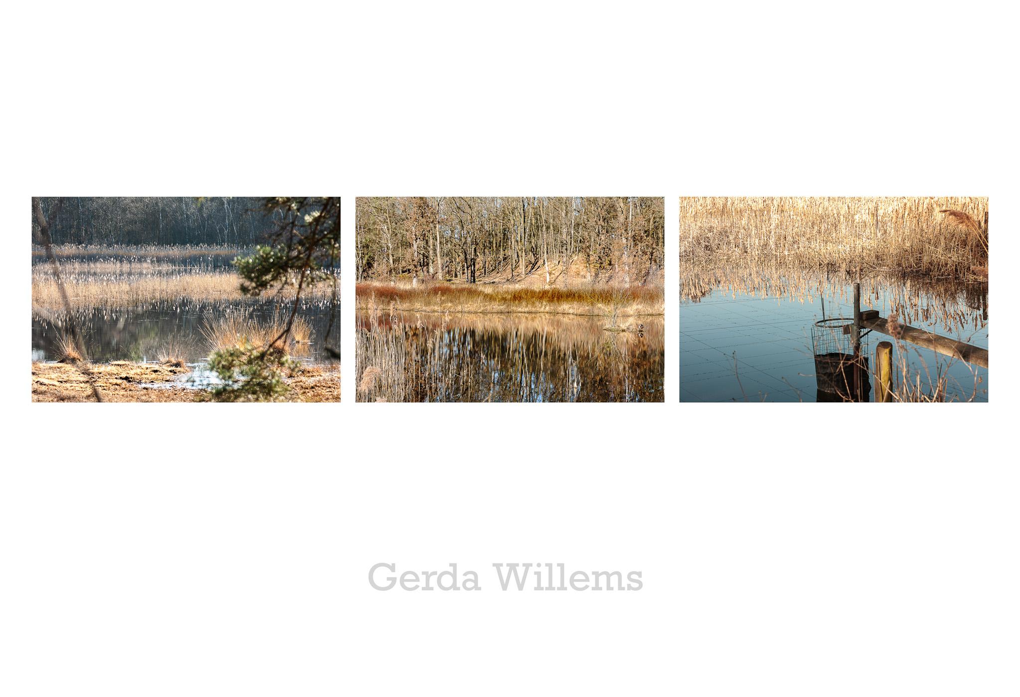 Gerda Willems -  laag contrast